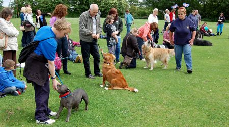 Photo of a dog show in progress at Stoke Gifford Jubilee Fête on Monday 4th June 2012.