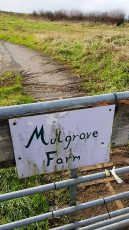 Photo of a field gate with the sign 'Mulgrove Farm' attached.