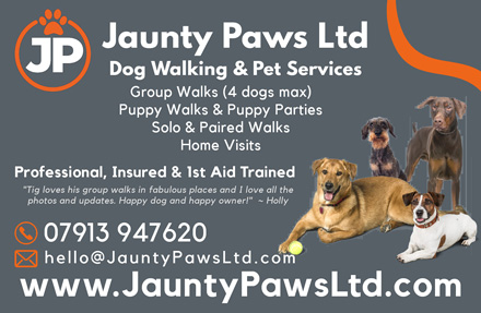 Jaunty Paws Ltd, dog walking and pet services in north Bristol.